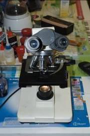 microscopio-180x271